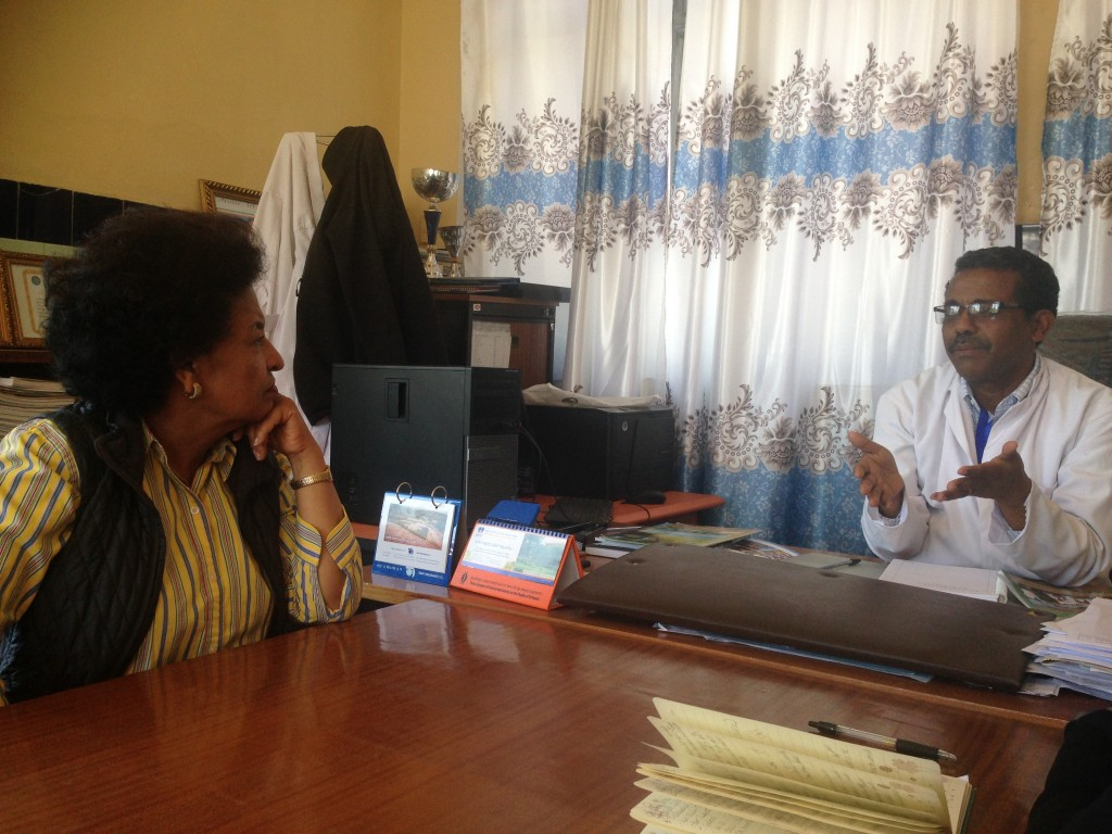 New AIHA Board member Dr. Debrework Zewdie talks with Dr. Fiseha Tadesse, Medical Director of Debre Berhan Referral Hospital. Through AIHA's PEPFAR-supported HIV/AIDS Twinning Center Program, Debre Berhan partnered with Elmhurst Hospital Center in New York City from 2007-2014 to improve the quality of HIV treatment, care, and support services.